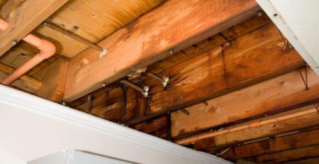 Photo showing water damage under wooden deck