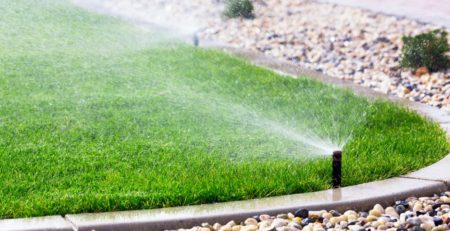 Simple Ways to Save Water In The Yard