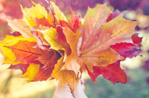 clearing leaves from vinyl patios and decks
