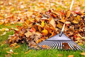 preparing yard and vinyl deck for fall